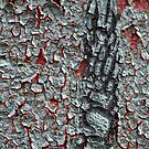 Peeling Paint 8 by rdshaw
