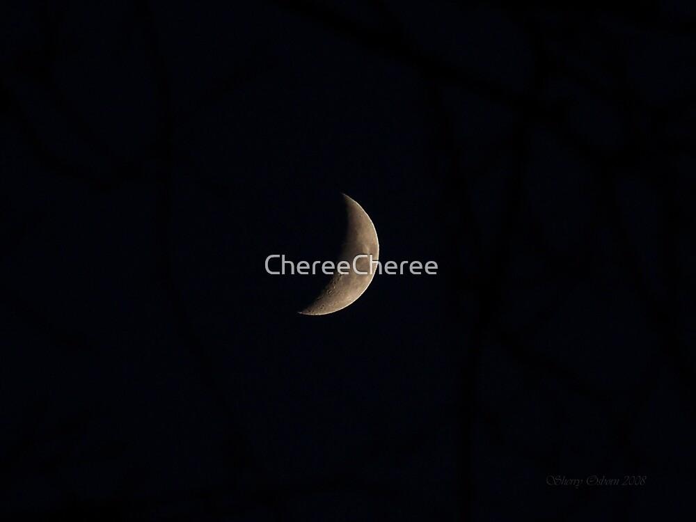 Tonights Moon by ChereeCheree