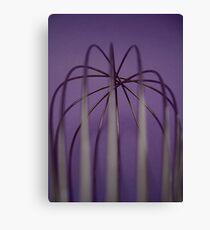 whisk  Canvas Print