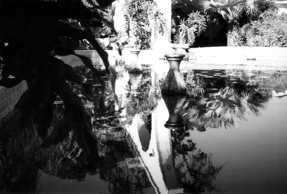Reflection by Steven Novak