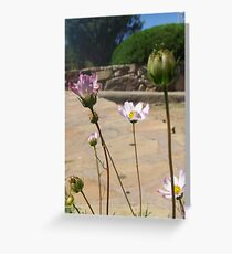 Flowers in New Mexico Greeting Card