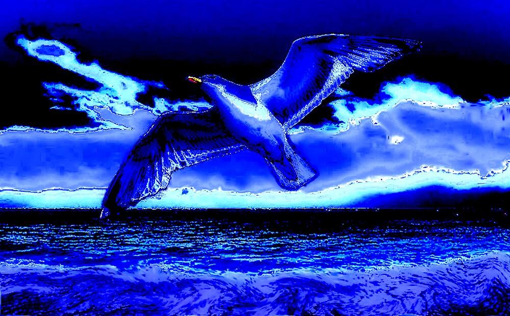 Seagull blue light by CheyenneLeslie Hurst