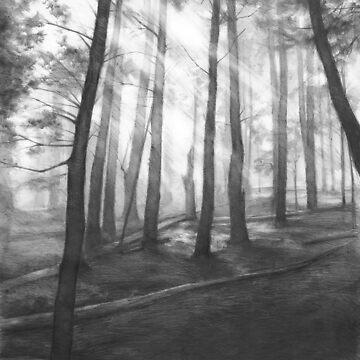 Dark forest - realistic pencil drawing by kkmiecikart