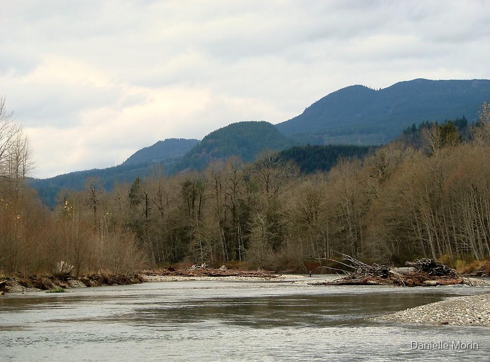 Stillaguamish River by Danielle Morin