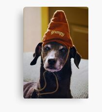 Grumpy Scooby..... Canvas Print