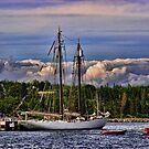 Setting Sail by Marlene Thoms