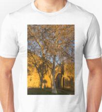 Golden Textures and Patterns Unisex T-Shirt