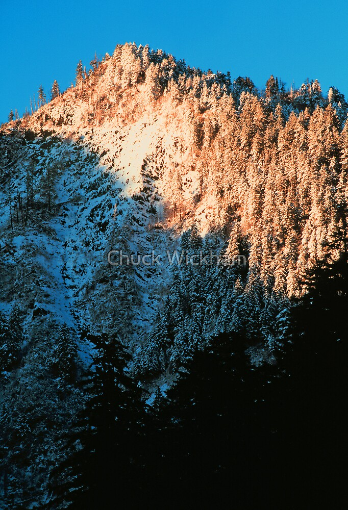WINTER, NEWFOUND GAP, GREAT SMOKY MOUNTAINS NP by Chuck Wickham