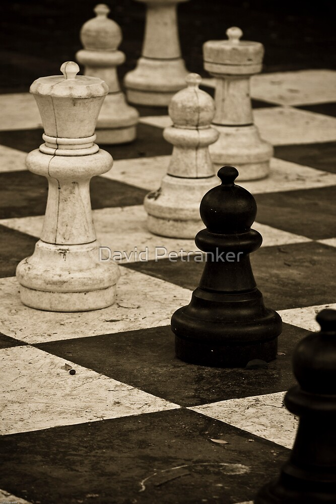 Chess Pieces 2 by David Petranker