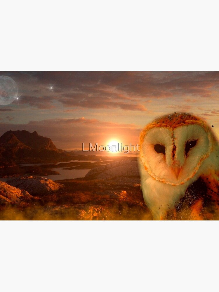 owls soul by LMoonlight