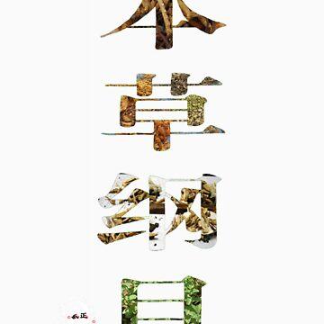 Compendium of Materia Medica (FuQiZheng edition) by FuQiZheng
