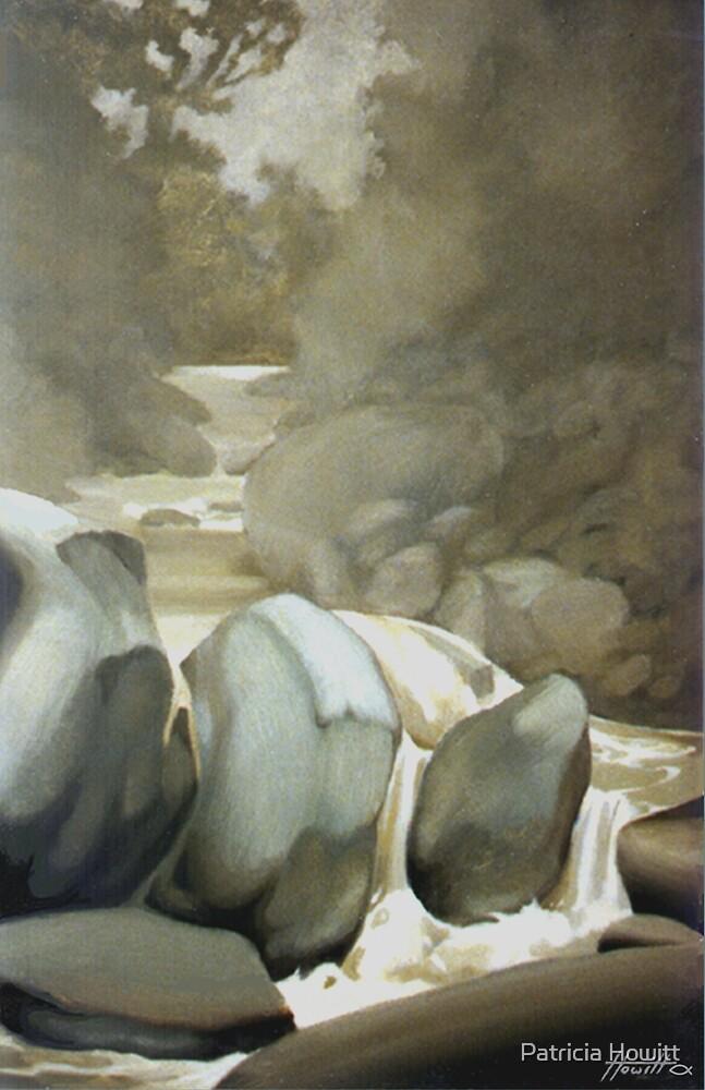 Rain on the Butler by Patricia Howitt