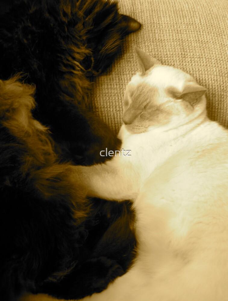 Ebony and Ivory. by clentz