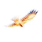 In Flight Kite - JUSTART (c) by JUSTART