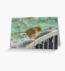 Kenilworth Robin Greeting Card
