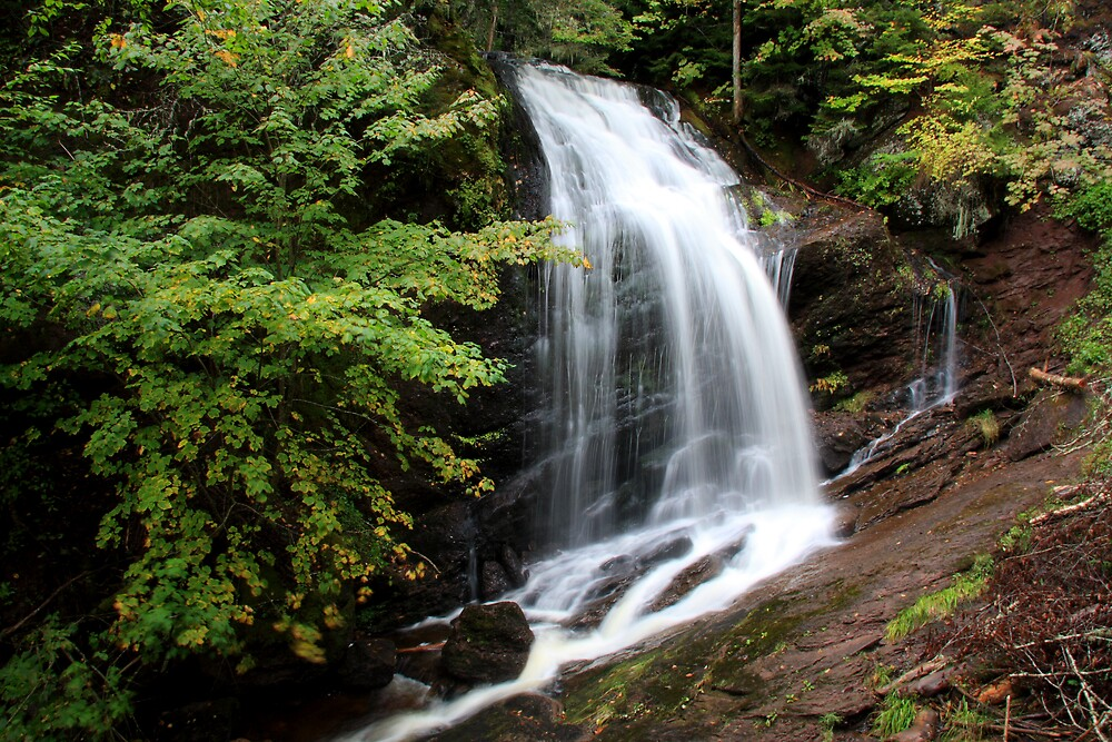 Waterfall at Fundy Bay by Dave Law