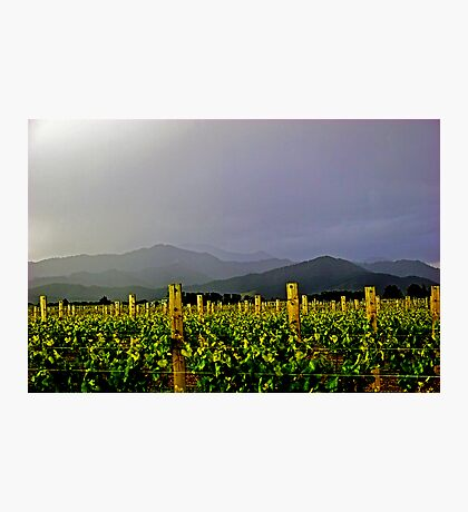 Storm over the  Richmond Ranges Photographic Print