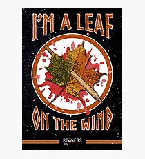 Serenity leaf on the wind Photographic Print