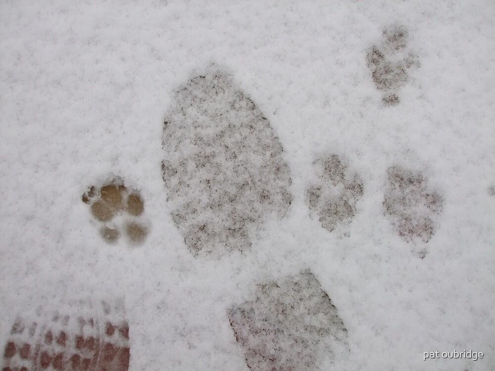 Walking The Dog by pat oubridge