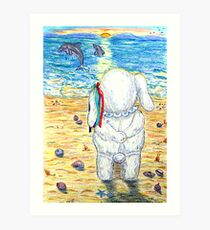 Pooky Dolphin Watching at Sunset Art Print