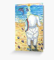 Pooky Dolphin Watching at Sunset Greeting Card