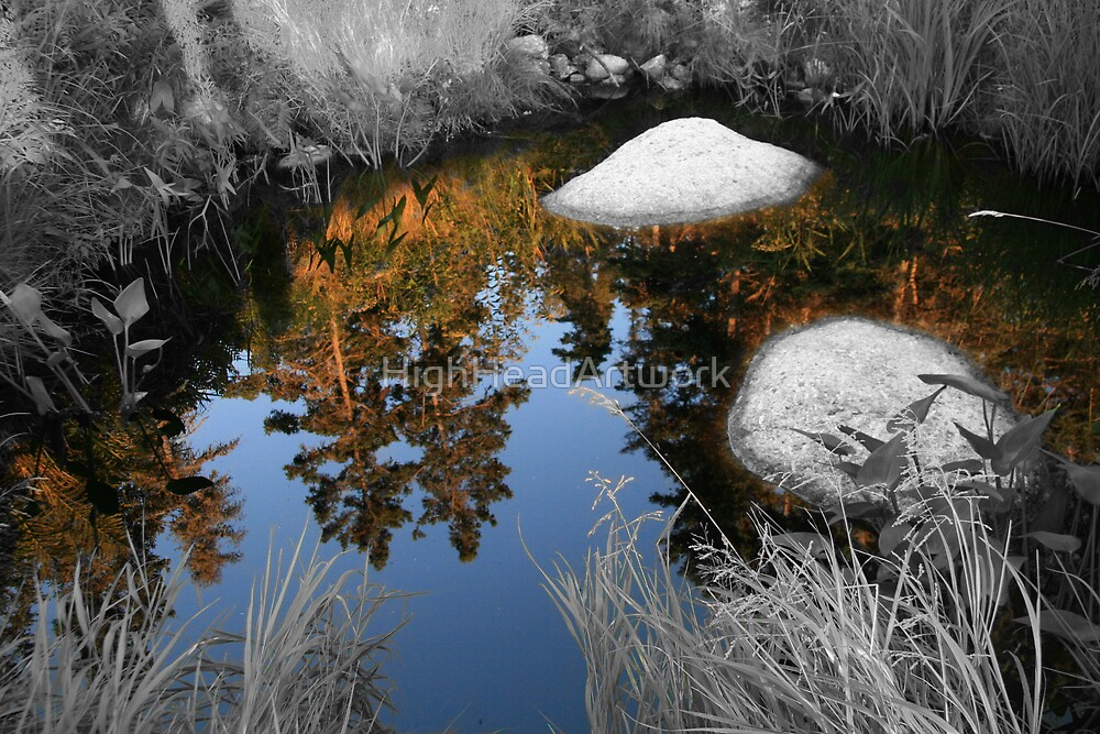 The Pond by HighHeadArtwork