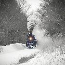 «Winter Express» de Janette Stephens