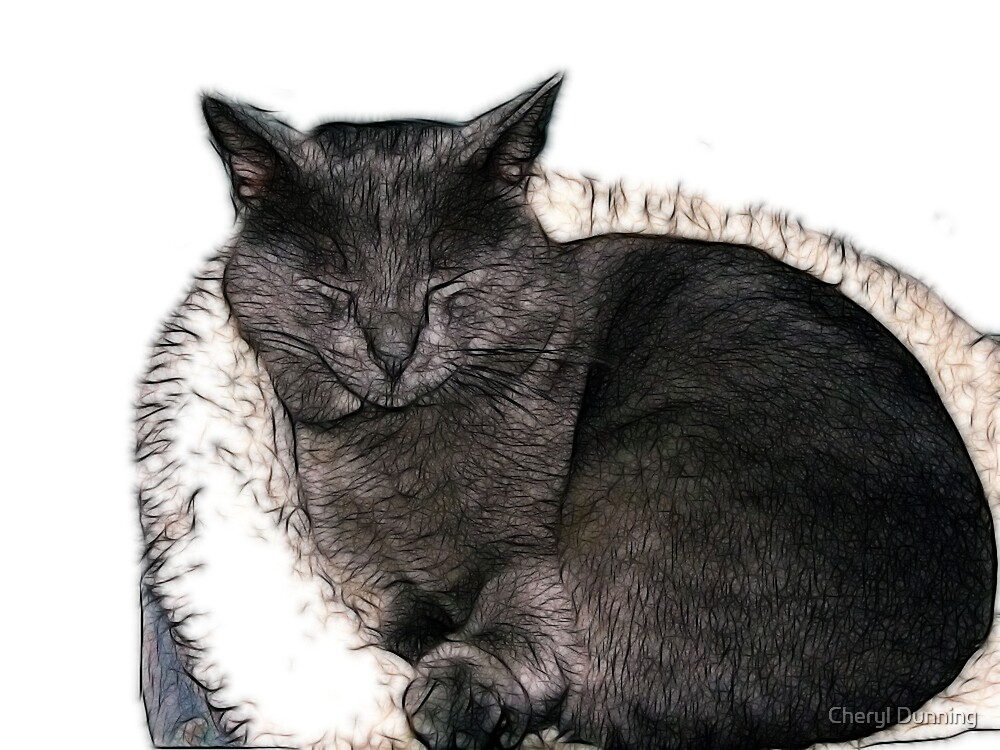 sleeping beauty by Cheryl Dunning