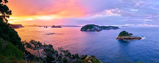Coromandel Coast Sunset by Adam Gormley