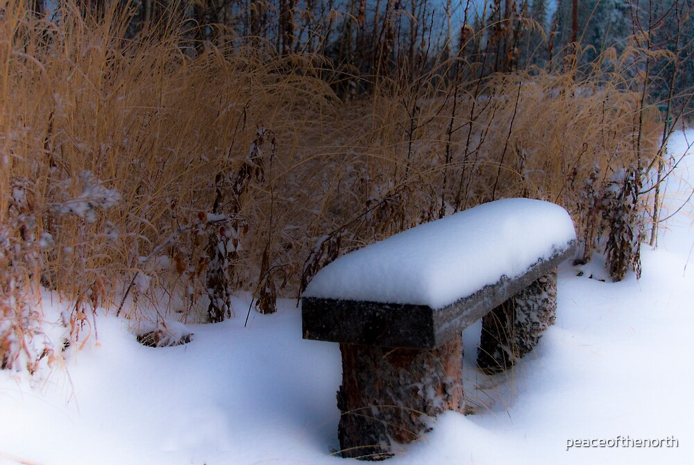Winter Bench by peaceofthenorth