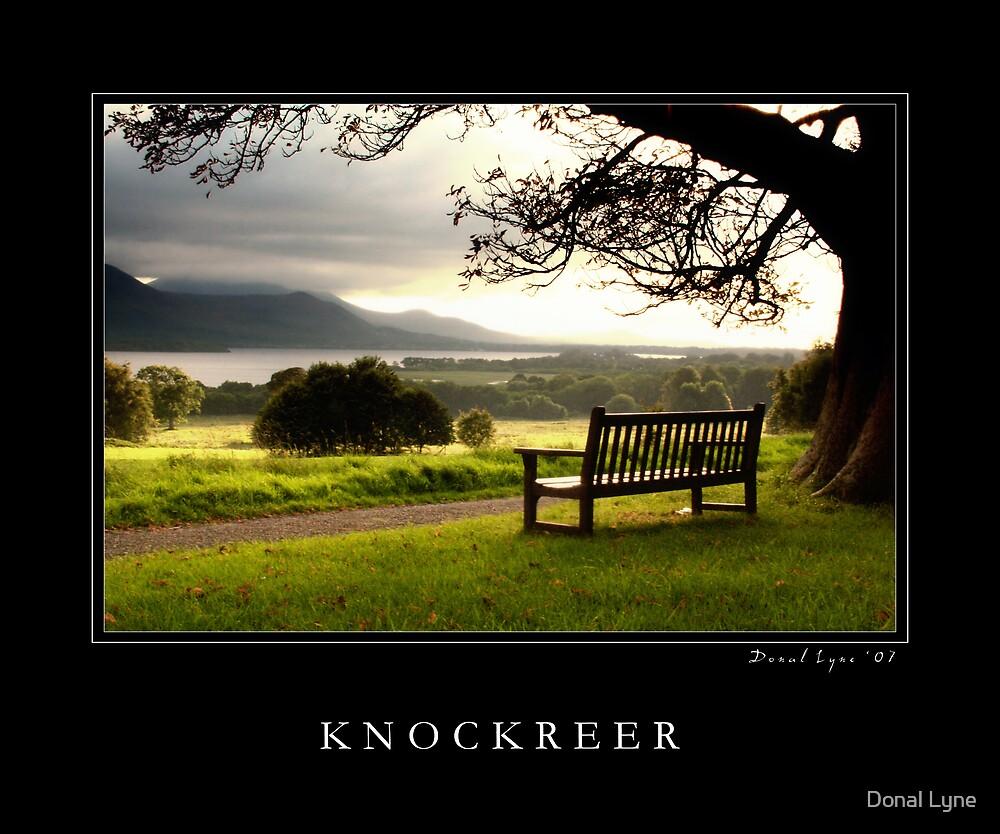 Knockreer by Donal Lyne