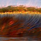 Wave by David Orias
