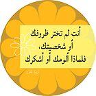 Arabic Philosophy Quote no blame by TheresaKhalil