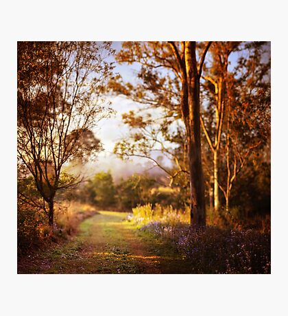 Morning is wonderful. Its only drawback is that it comes at such an inconvenient time of day. Photographic Print