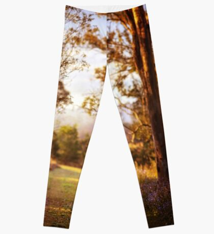 Morning is wonderful. Its only drawback is that it comes at such an inconvenient time of day. Leggings