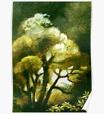Spirit of the Tarairi Tree Poster