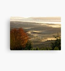 Layer upon layer Canvas Print