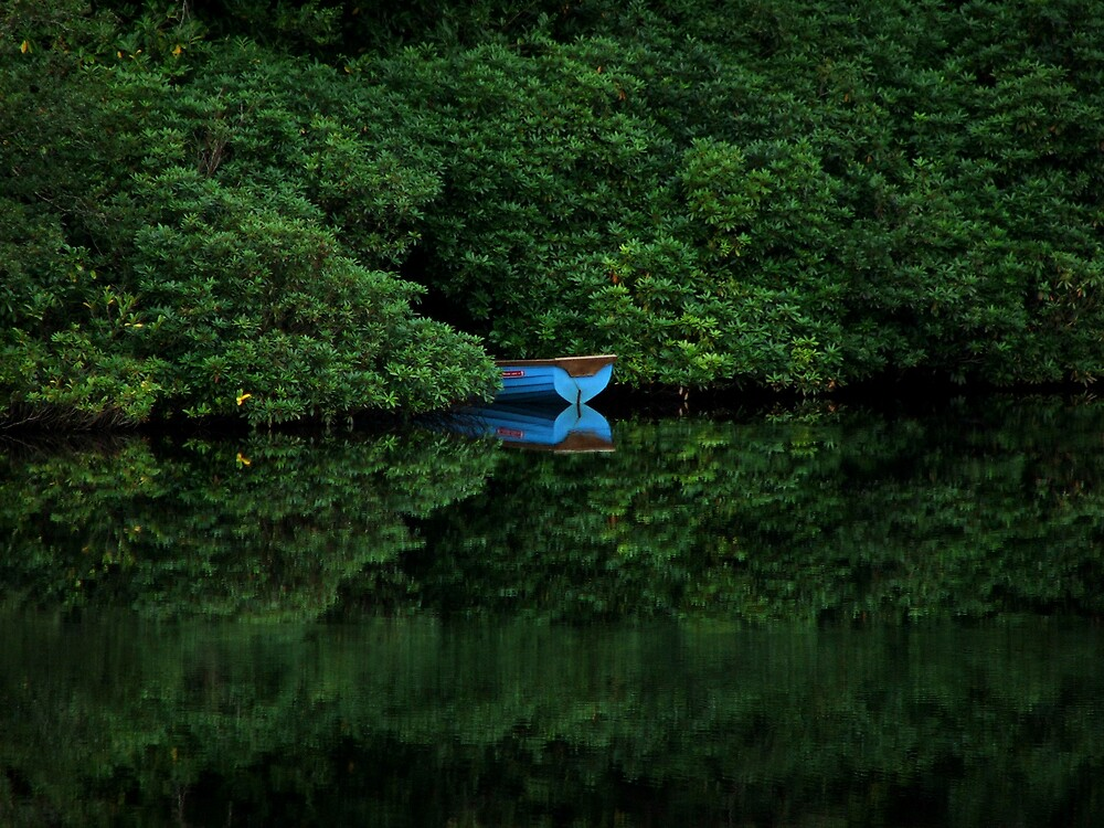 Blue Boat by Michelle Walsh