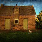 In the farmyard by Mel Brackstone