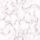 Elegant Marble style by lematworks