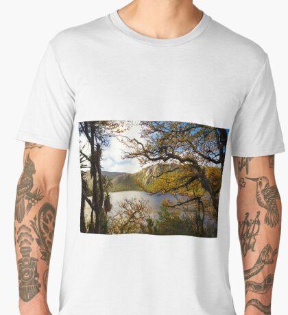 The beautiful Fagus Men's Premium T-Shirt