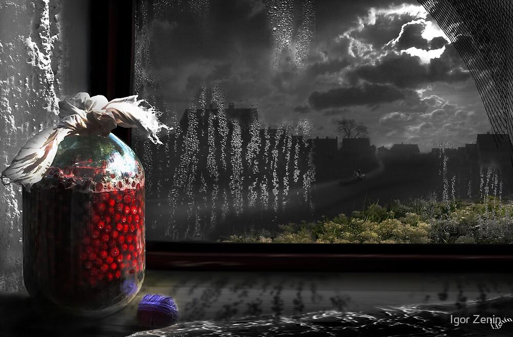 Window View by Igor Zenin