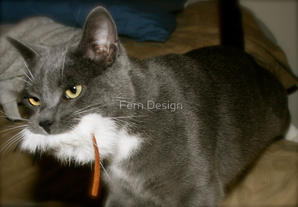 This Is My Mouse.... Not Yours...  by Fern Design