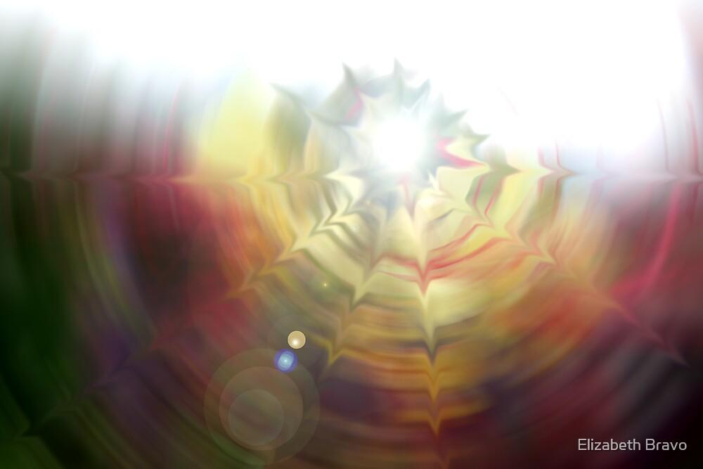 Color Wheel by Elizabeth Bravo