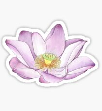 For the Lotus Eaters Sticker
