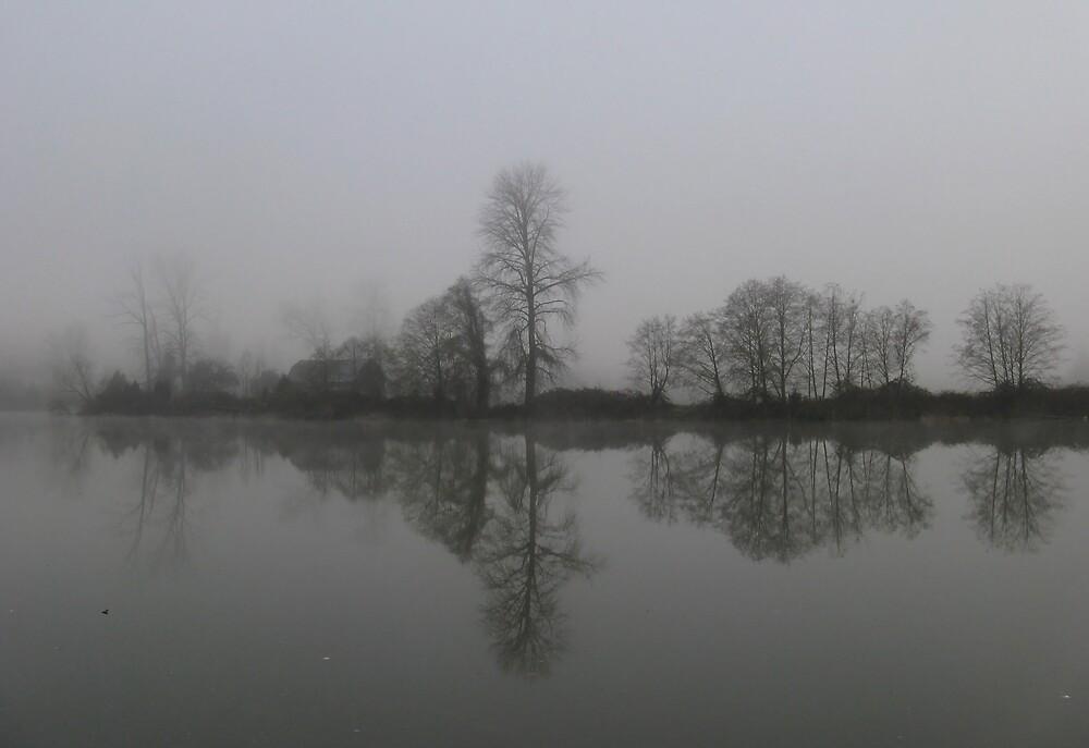 Foggy by Corey Bigler