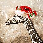 Christmas Giraffe by CarolM
