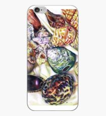 A collection of shells iPhone Case
