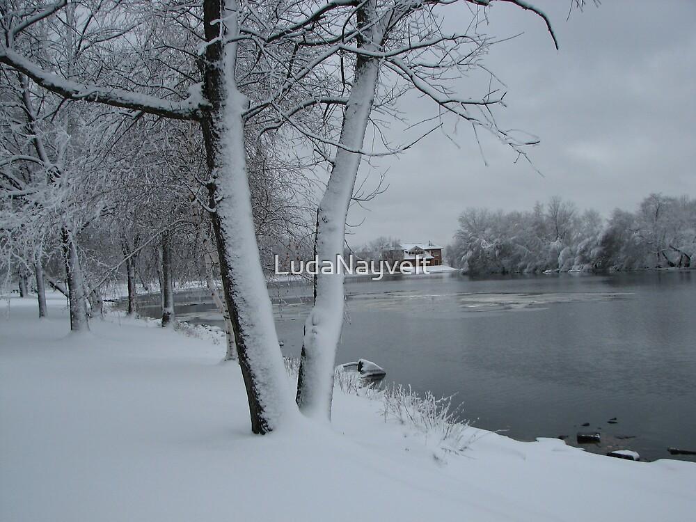 Cold! by LudaNayvelt