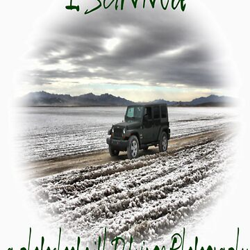 I Survived by dwinge
